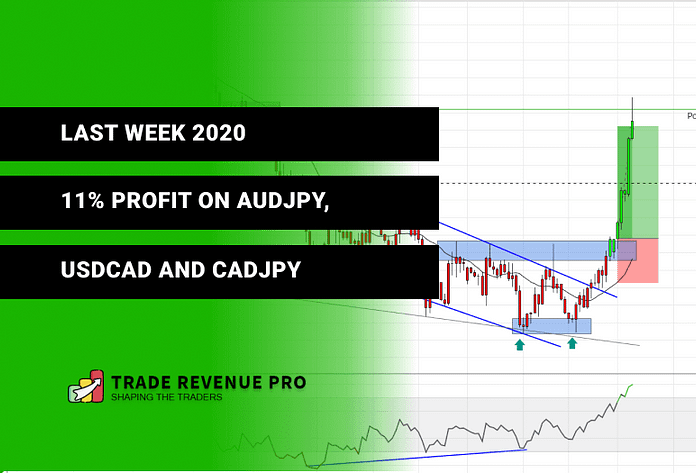 11% Profit in the Last Week of 2020 - Trade Reviews