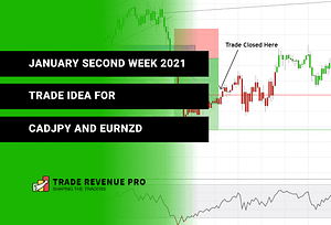 January Second Week 2021 - Trade Idea for CADJPY And EURNZD